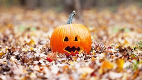 Samhain - na czym polega ta tradycja?