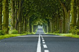 NIK: Samorządy nie są zainteresowane zarządzaniem przejętymi drogami krajowymi