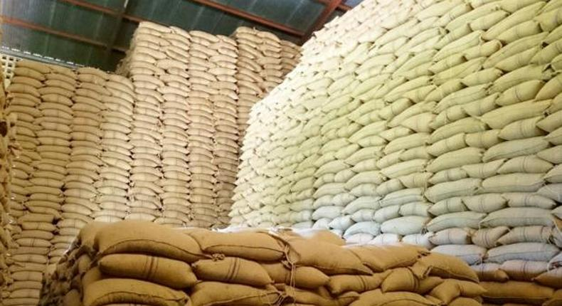 Bags of maize in storage
