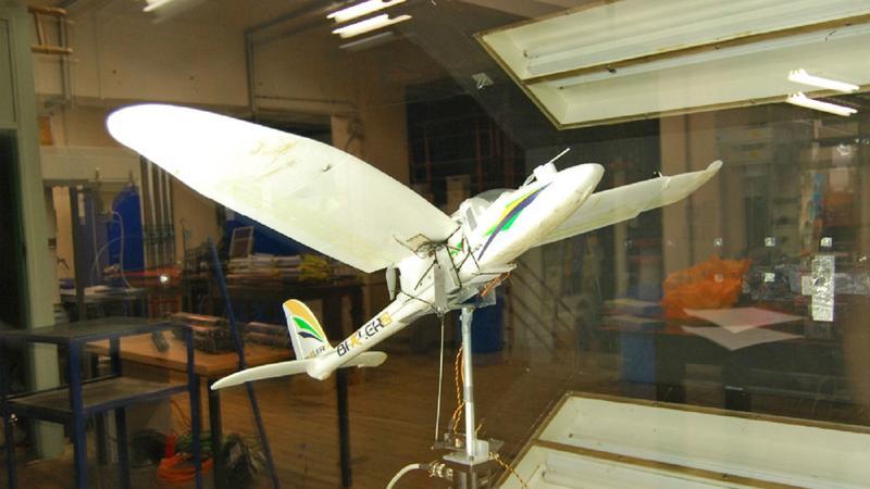 Dron lądujący jak ptak