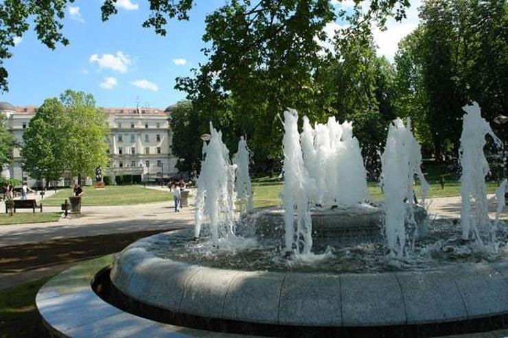 fontana vuk2