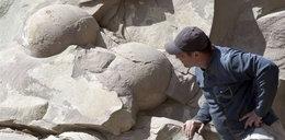Znaleźli 40 jaj dinozaurów. W Czeczenii