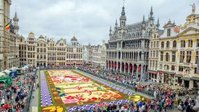 Na Grand Place w Brukseli po raz 20. ułożono kwiatowy dywan