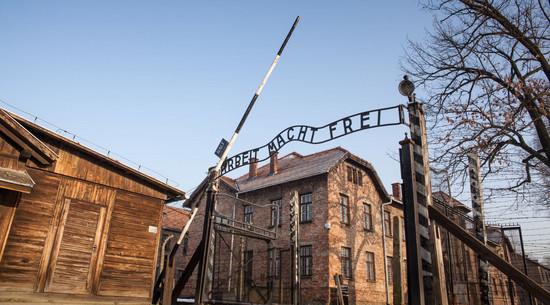 Była ambasador Polski w Izraelu: Szydło chciała zostać dyrektorką muzeum Auschwitz