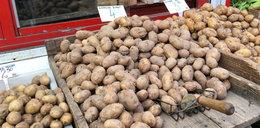 Polskie ziemniaki drogie jak nigdy dotąd!