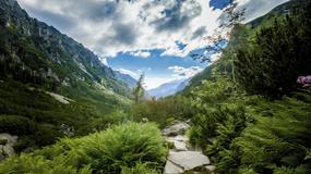 Tatrzańskie szlaki cieszą się bardzo dużą popularnością wśród turystów