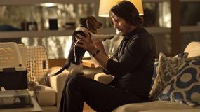 """John Wick: Chapter Two"": nowe informacje o filmie"