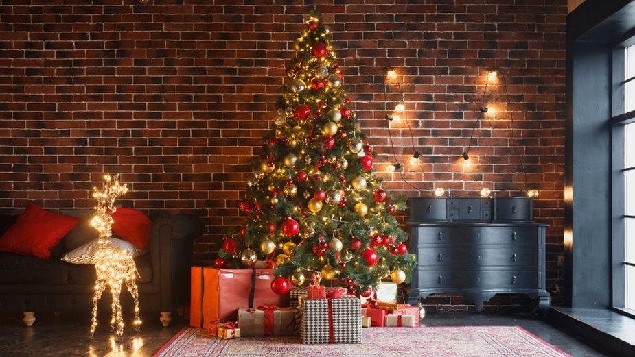 Świąteczna choinka (zdj. ilustracyjne)