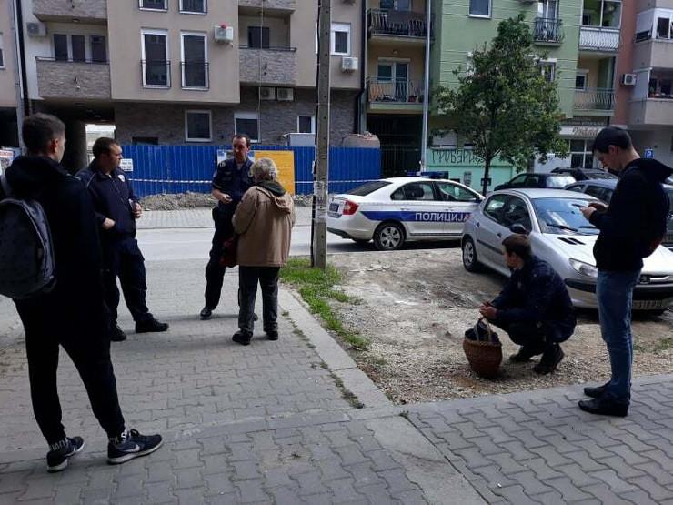 policija izbačene žene novi sad