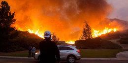 Ogromny pożar w Kalifornii. Ewakuowano 60 tysięcy mieszkańców