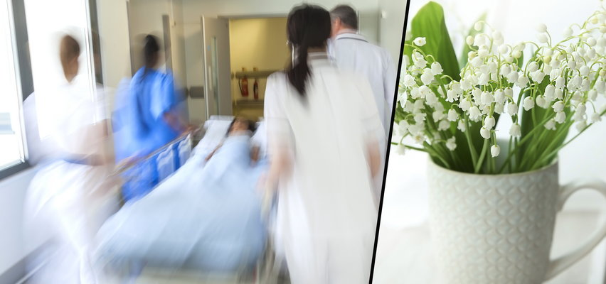 16-latka wypiła wodę po kwiatkach. Wylądowała w szpitalu. Czasem to może zabić