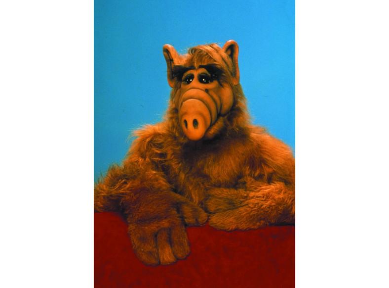 """""""Alf"""""""