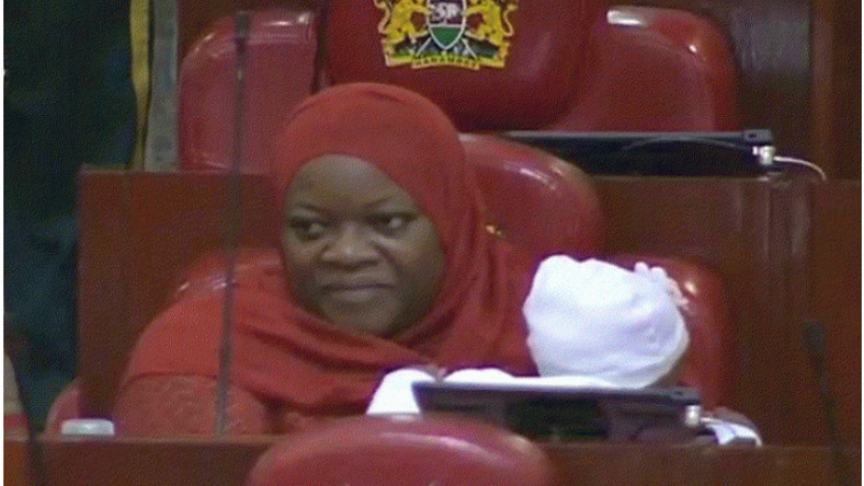 Speaker orders armed security to drive out lactating female MP and her baby from parliament