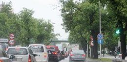 Zasłonięte znaki zagrażają kierowcom