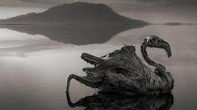 Najdziwniejsze jeziora świata