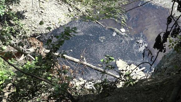 Ekološka katastrofa na reci Moravici kod Ivanjice: Izliven mazut