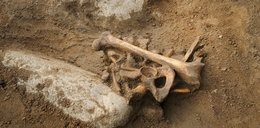 Tajemniczy szkielet na szkolnym boisku