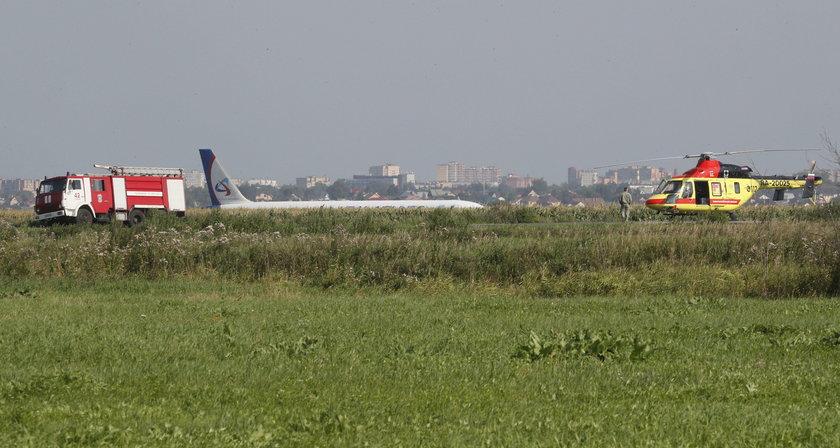 Horror! Pilot musiał lądować w polu kukurydzy
