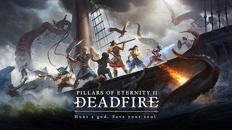 Pillars of Eternity 2 - Obsidian ujawnia popremierowe DLC