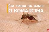 sorti_o_komarcima7_vesti_blic_safe