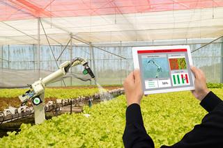 Likwidacja dużych i dobrze funkcjonujących przedsiębiorstw rolnych może zaszkodzić całemu rolnictwu