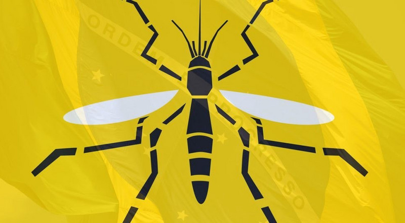 Here's all you need to know about Yellow Fever