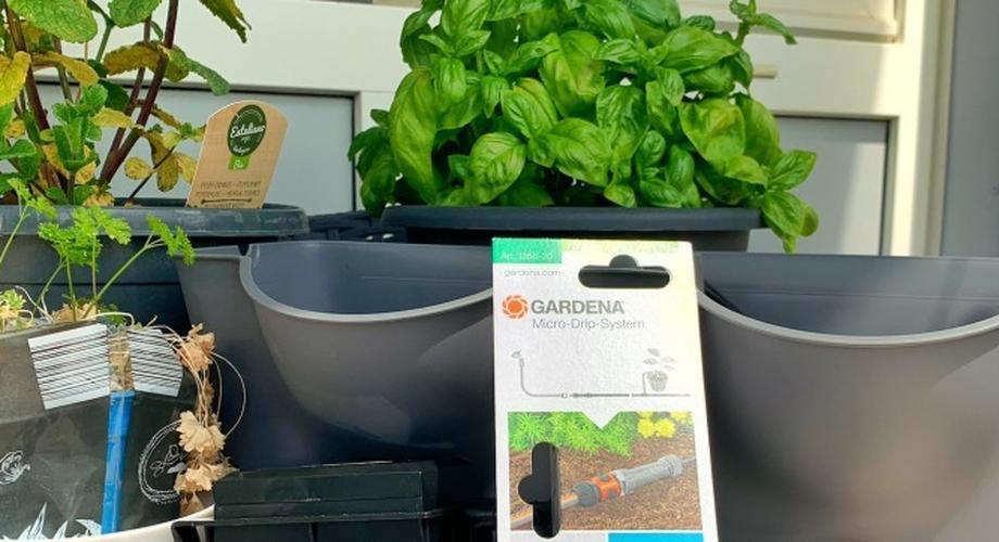 Automatische Bewässerung für Wohnzimmer, Balkon & Terrasse