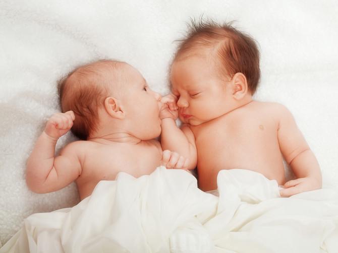 Novi Sad je poslednjih godina postao poznat kao evropska prestonica blizanačkih trudnoća