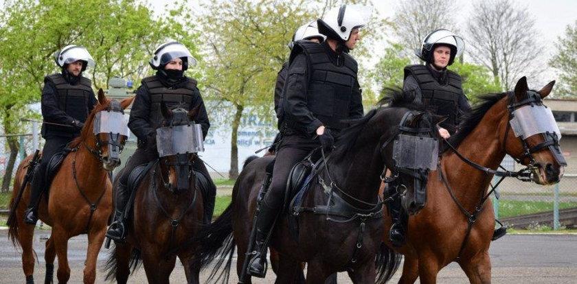 Policyjne konie zdały egzamin