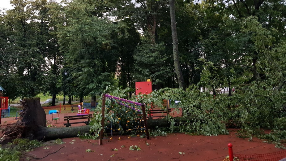Skutki burzy w Aleksandrowie Łódzkim