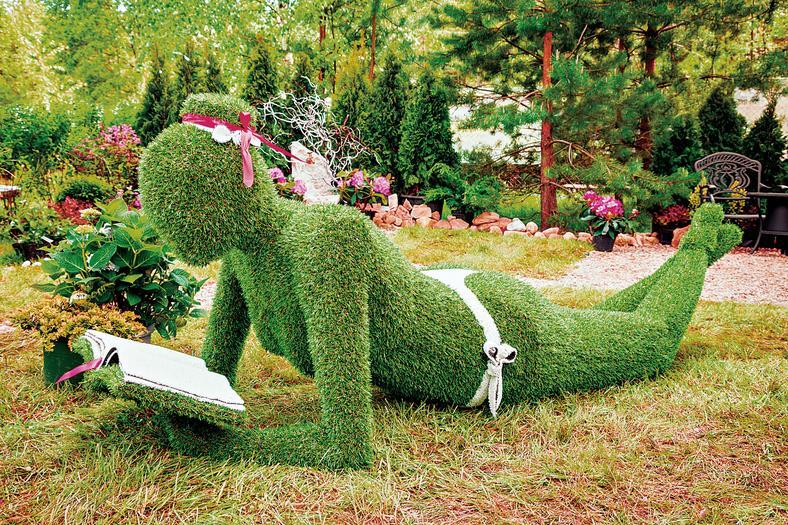 topiary w ogrodzie jak zrobi efekty techniki ars topiaria dom. Black Bedroom Furniture Sets. Home Design Ideas
