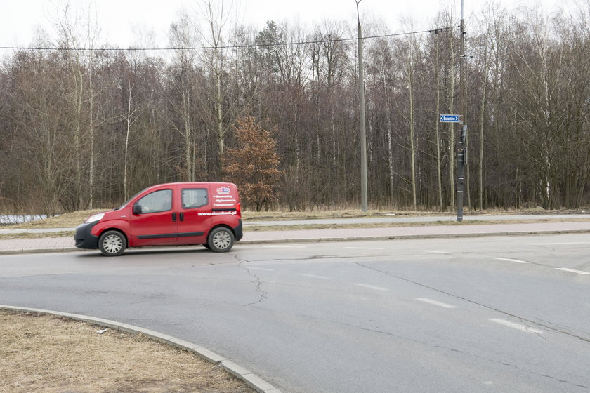 Nowa droga w Katowicach przetnie las