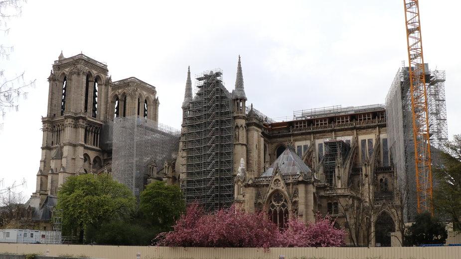 Paryska katedra Notre Dame