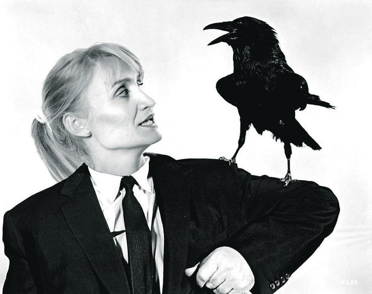 Vrane nadaju, Ivana Mastilović Jasnić