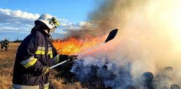 Pożar w Biebrzańskim Parku Narodowym. Mają dwie hipotezy!