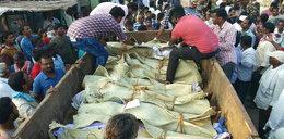 Dziesiątki zabitych w wypadku autobusu z pielgrzymami