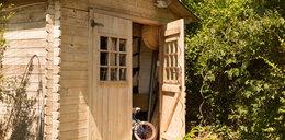 Drewutnie, wiaty i domki na narzędzia. Co warto mieć na działce i w ogrodzie?