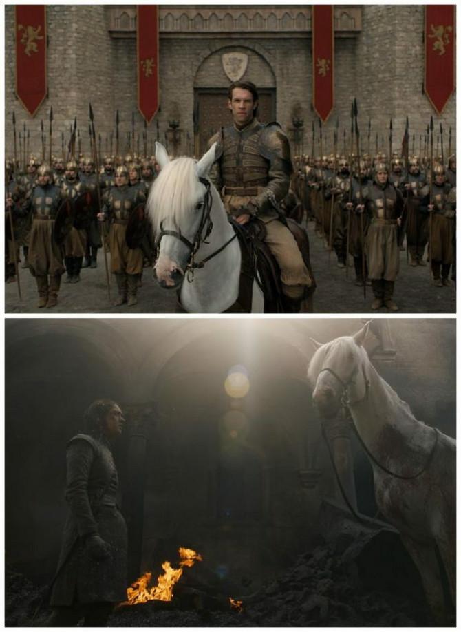 Beli konj i arja