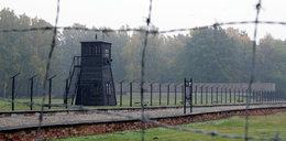 Niecodzienne znalezisko w obozie koncentracyjnym