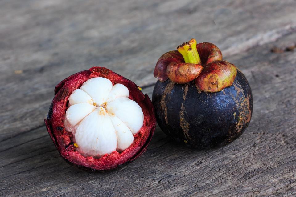 Mangostan (garcinia cambogia)