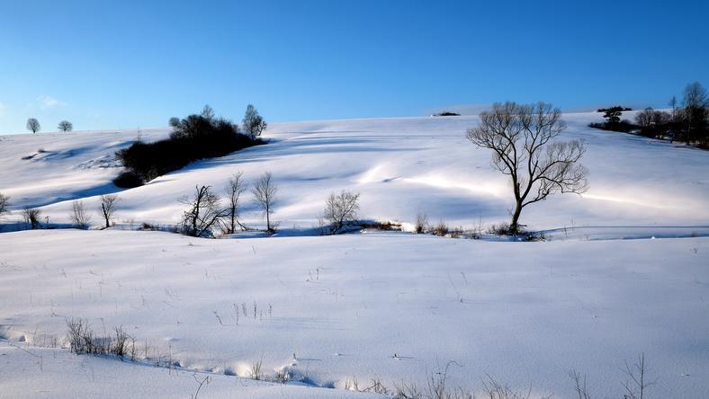 Jaka pogoda czeka nas w sobotę 8 stycznia 2017 roku?