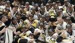PITSBURG U TRANSU Pingvini su hokejaški vladari, navijači jeli nepečenu ribu od radosti
