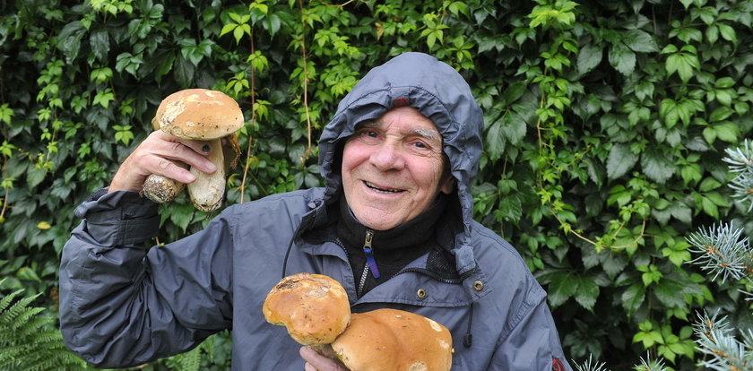 Wielki wysyp grzybów! Borowiki można kosić kosą. Gdzie?