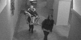 Ukradły krzesło. Prokurator: To nie kradzież!
