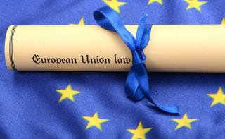 Sąsiedzi, nie oczekujcie zbyt wiele od UE. Partnerstwo Wschodnie zaczęło mocno hamować