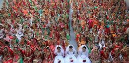 Bogacz wyprawił im ślub jak z bajki. Zobacz zdjęcia!