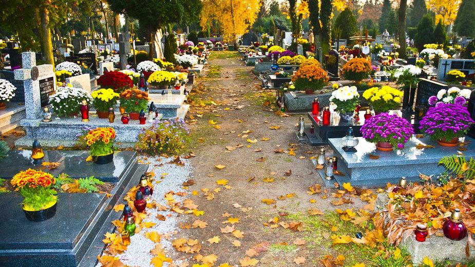 Wszystkich Świętych cmentarz