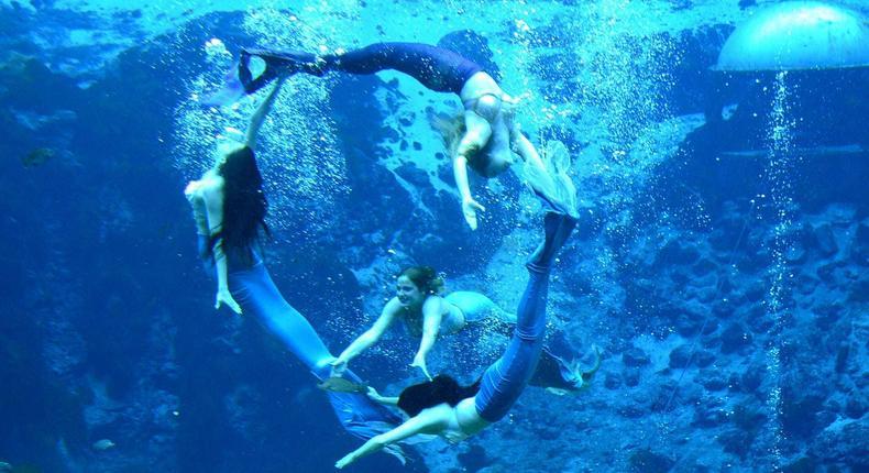 Mermaids performing underwater.