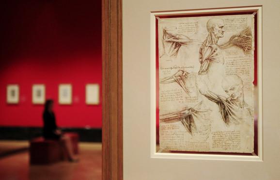Najmanje 300 godina ispred svog vremena - Leonardov crtež ljudskog ramena