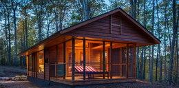 Przerażający dom w lesie. Mógłbyś w nim mieszkać? FOTO